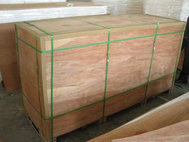 Pallet protected by plywood all sides